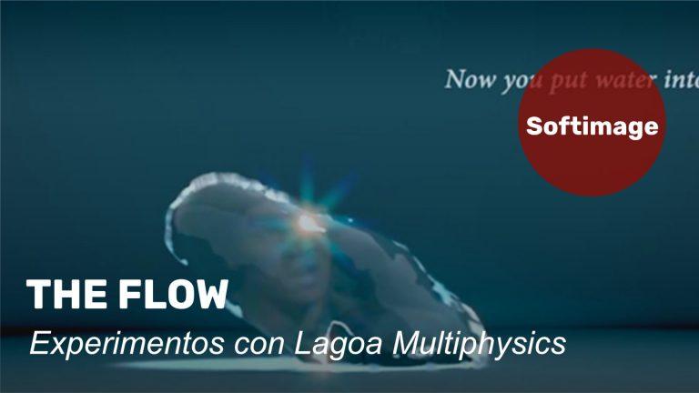 The Flow - Experimentos con Lagoa Multiphysics