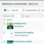 El contenido multimedia (Medios)