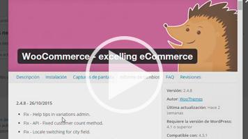 Actualizaciones de WooCommerce