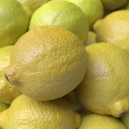 Limones con Color Jitter en Arnold