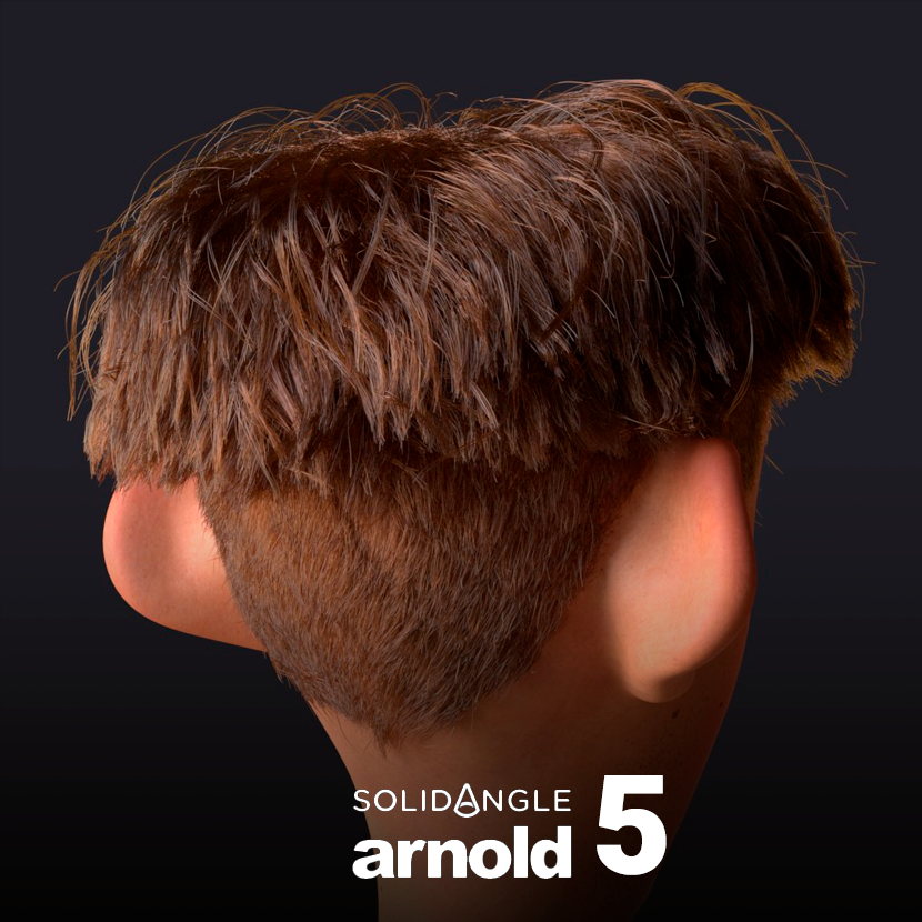 Arnold 5 para Maya